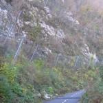 Kolesarska steza Solkan - Plave